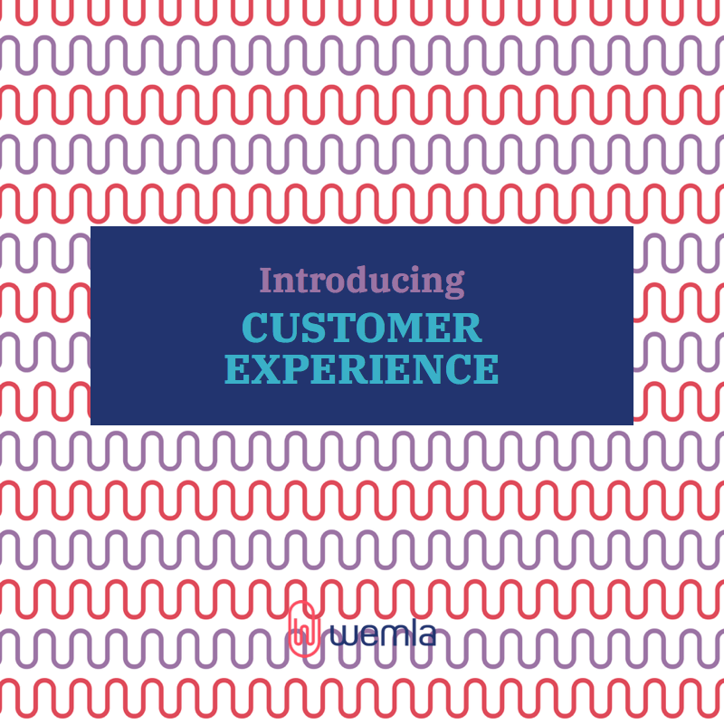 Introducing Customer Experience
