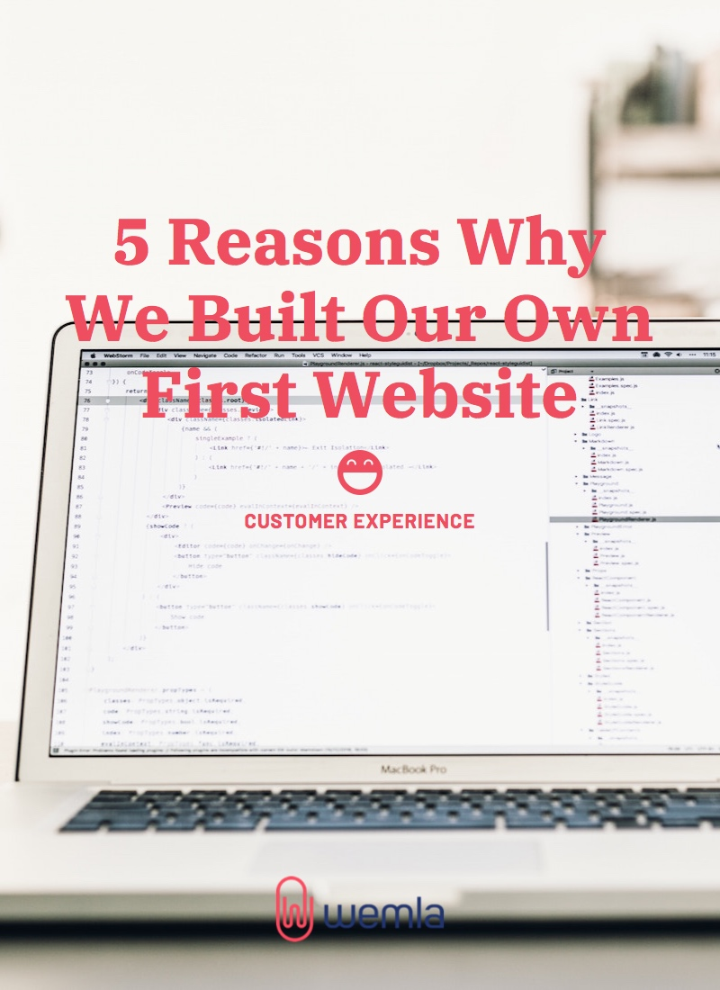 5 Reasons Why We Built Our Own First Website