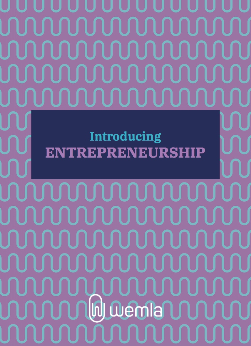 Introducing Entrepreneurship