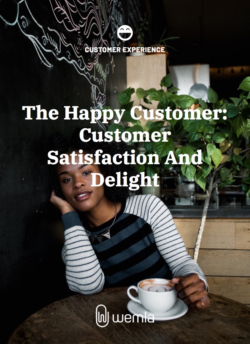 The Happy Customer: Customer Satisfaction And Delight